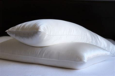 Silk Sleep Pillow by Mari Silk Filled Pillow With Silk Cover
