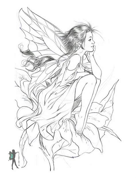 coloring pages detailed fairies enchanted designs fairy mermaid blog free fairy