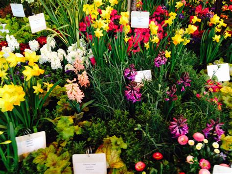 Seattle Flower Garden Show Read Authors February 2016
