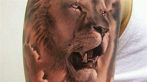 lion shoulder tattoos for men shoulder designs for