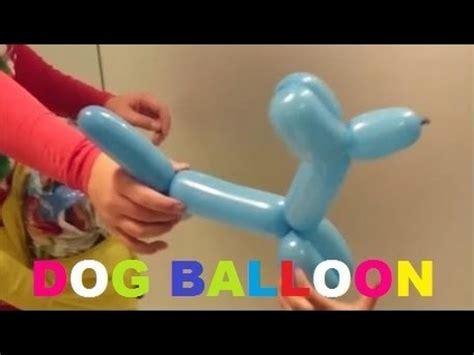 Balon Anjing from balloon membuat anjing dari balon