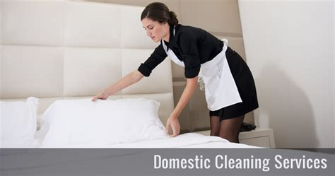 Upholstery Cleaning Equipment Domestic Cleaning Services In London