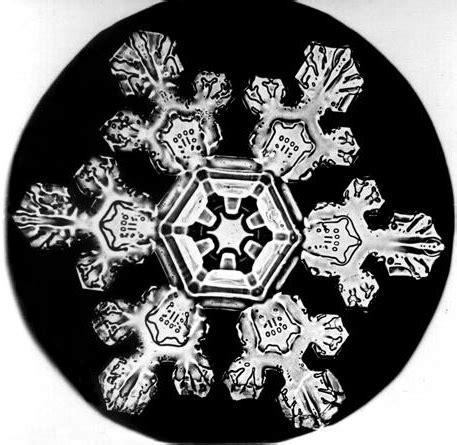 snowflake bentley camera librarianism chronicles snowflake bentley