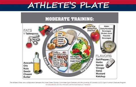 8 Popular Diets Which Ones Work by Netball Specific Nutrition Netball Wellington Centre