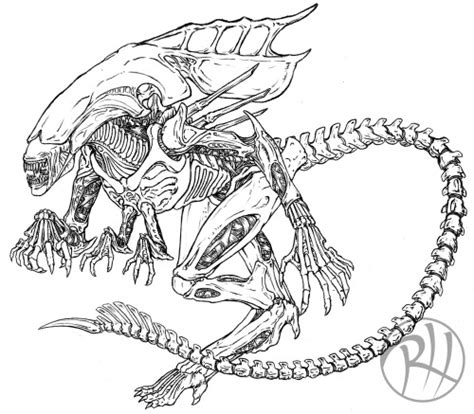 Xenomorph Coloring Page by The Gallery For Gt Xenomorph Coloring Pages