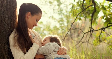 how to stop comfort nursing the pain free way to stop breastfeeding an infant or toddler