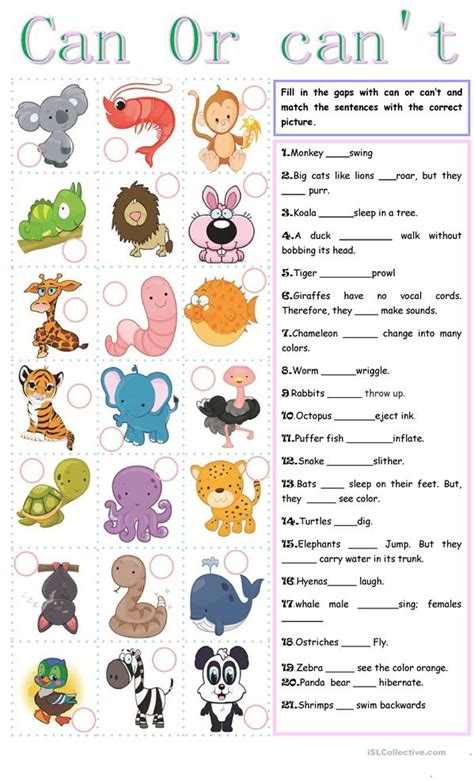can t 962 free esl can worksheets