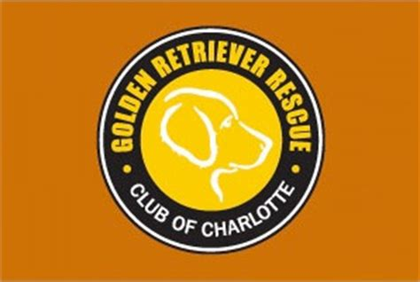 golden retriever rescue league dogs