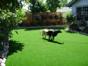 Landscape Ideas For Yards With Dogs Beautiful Landscaping Ideas For Small Backyards With Dogs
