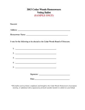 Sle Hoa Board Of Directors Ballot Fill Out Online Forms Templates Download In Word Pdf Hoa Board Election Ballot Template