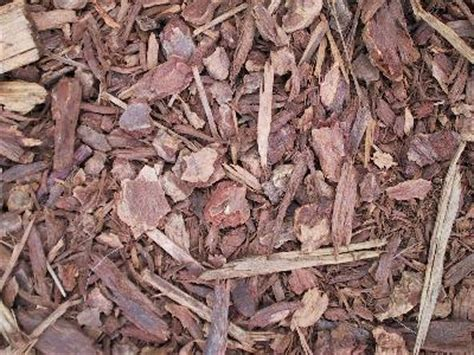 using peat moss in vegetable garden mulching to retain moisture and weeds