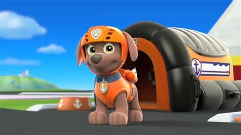se filmer avatar the last airbender gratis patrulha canina s 233 ries cinema10 br