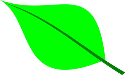 Green Leaf Outline Png by Green Leaf Clip At Clker Vector Clip Royalty Free Domain