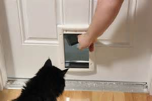 20 types of cat doors interior amp exterior doors