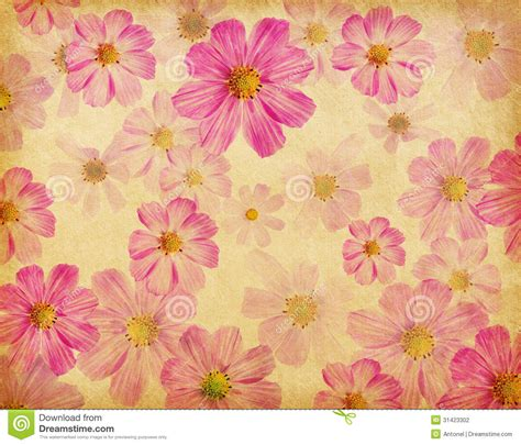 Beautiful Paper Flowers - paper texture with beautiful pink flowers stock