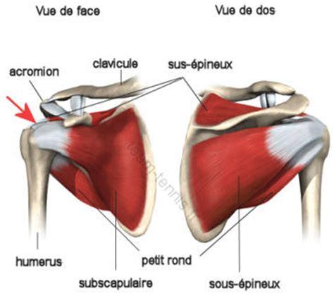 les blessures de l'épaule au tennis syndrome de la