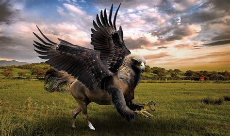 imagenes de animales mitologicos ilustraci 243 n de animales h 237 bridos y mitol 243 gicos