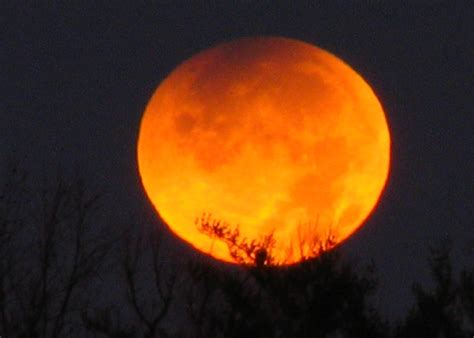 best full moon tattoo effects on mood full tattoo ask an astrologer moon mood madness oh my stars