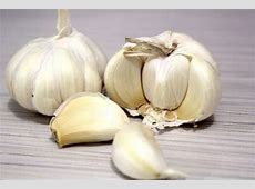 Garlic Free Stock Photo - Public Domain Pictures My Online Account