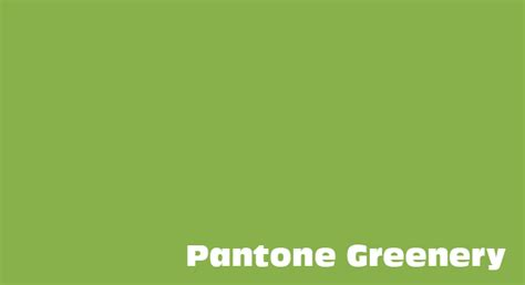 color of 2017 the color of the year 2017 greenery by pantone noupe