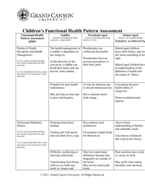 functional health pattern assessment exles instant download