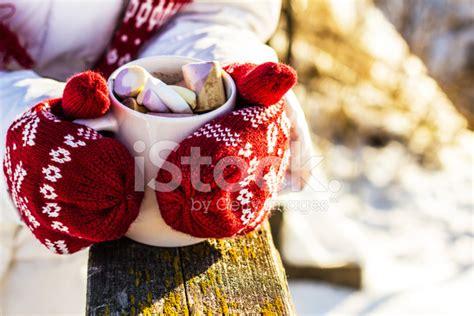 hot protein chocolate tina v brotke my fitness journey mug of hot chocolate with marshmallows stock photos