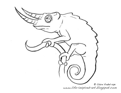 chameleon coloring pages az coloring pages