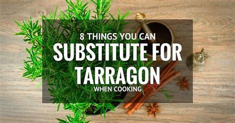 8 amazing tarragon substitutes when cooking may 2016