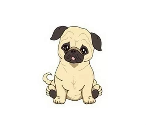 Kawaii Fluffy Dogs Iphone Dan Semua Hp transparent pugs