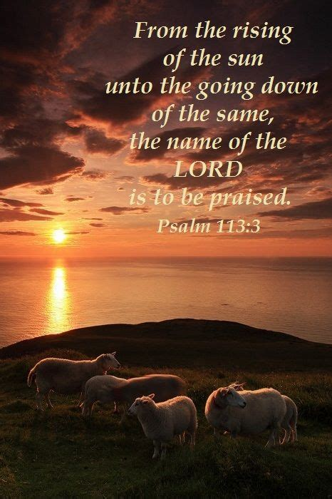 comfort from the lord top 25 best psalm 27 kjv ideas on pinterest bible