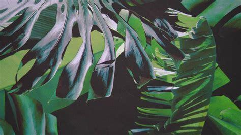 dekbedovertrek ledikant jungle snoozing jungle dekbedovertrek green smulderstextiel nl