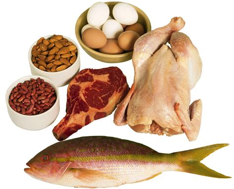 protein filled foods what are the 10 most filling foods
