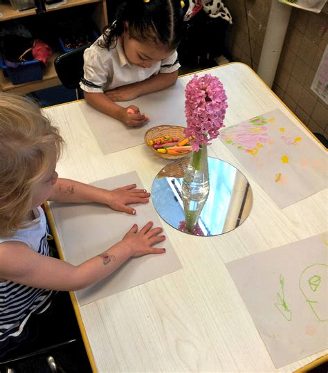 Hyacinth Vase Reggio Inspired Art Provocations And Play