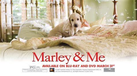 marley and me marley and me images marley and me hd wallpaper and background photos 5315870