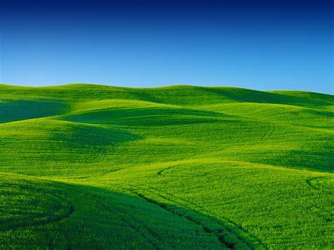 wallpaper landscape greenery scenery blue sky stock