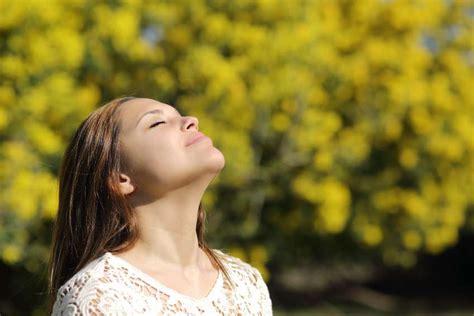 luft befeuchten hausmittel zwiebelsaft ist ein wirksames hausmittel bei grippe evidero