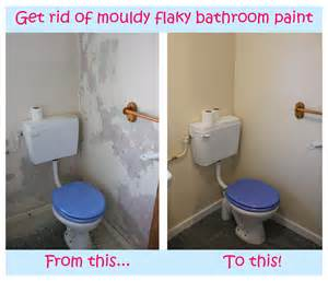 hack and paint say goodbye to mouldy paint my other favourite life