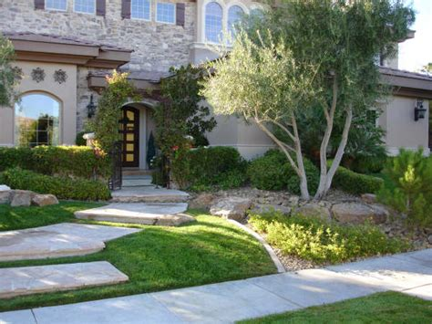 looking for just the right las vegas landscaping plant