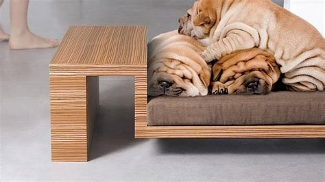 best couches for dogs best couches for dogs and cool dog bed ideas for your pets