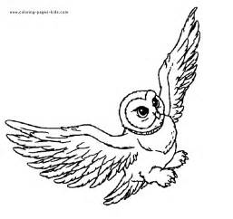 harry potter coloring pages hedwig harry potter hedwig owl coloring pages