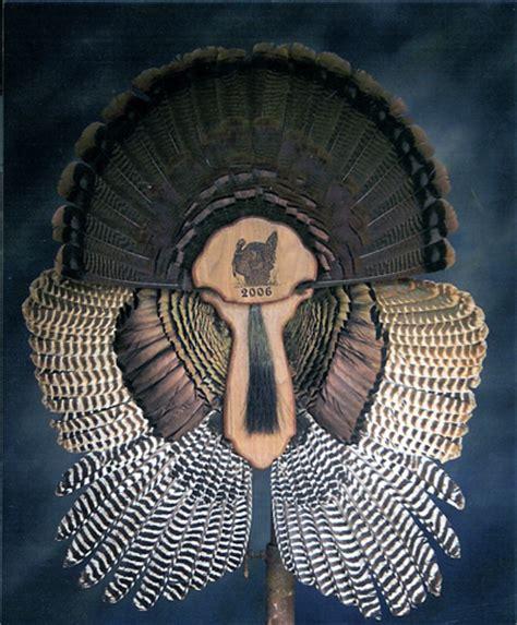 Turkey Fan Mount Template by Antlers 2 Fins Taxidermy Photoalbum