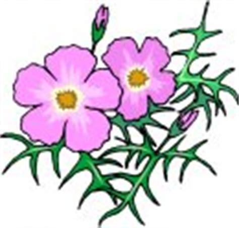clipart fiore clipart fiori immagini di fiori