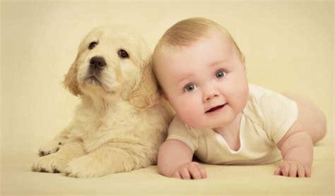 si鑒e v駘o enfant gesta 231 227 o beb 234 utilit 225 rios