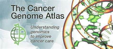 the cancer genome atlas office of cancer genomics