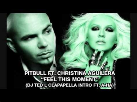download mp3 dj feel this moment pitbull ft christina aguilera feel this moment dj ted