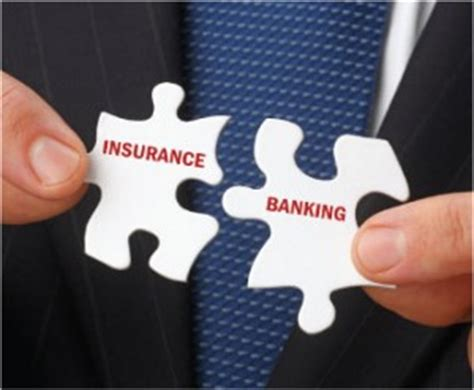 Mba Banking by Mba In Banking And Insurance Distance Education Vmu
