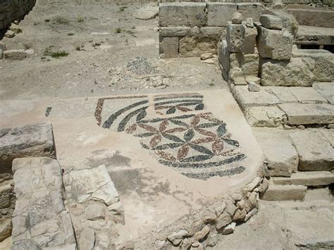 Discovery Of The Floor History - flower of history 10 handpicked ideas to discover