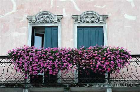 balcony window boxes padua balcony and window boxes photograph by mike nellums