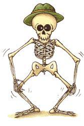 imagenes de una calavera animada gifs de esqueletos