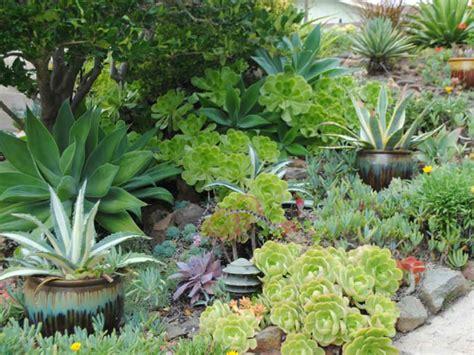 Sukkulenten Garten by A Guide To Creating A Succulent Garden World Of Succulents